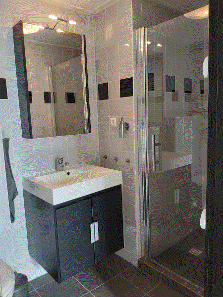 vakantiewoning prunus 7 badkamer foto 1