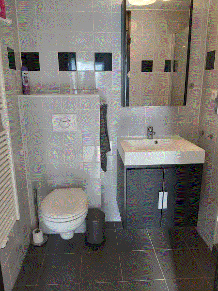 afbeelding vakantiewoning prunus 7 badkamer foto 2